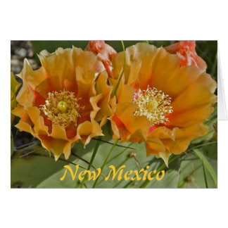 New Mexico - Land of Enchantment Card