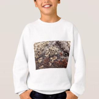 New Mexico Lichen Desert Rock Mossy Orange Sweatshirt