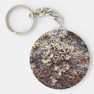 New Mexico Lichen On Desert Rock Keychain