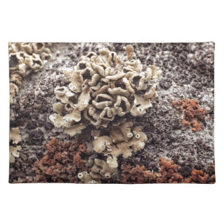 New Mexico Lichen On Desert Rock Placemat