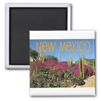 New Mexico Fridge Magnets