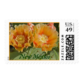 New Mexico Stamps