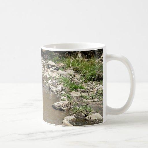 New Mexico Rio Bonito Classic White Coffee Mug