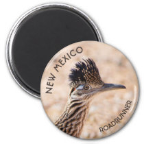 New Mexico Roadrunner Magnet