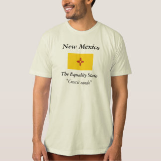 New Mexico State Flag Tee Shirt