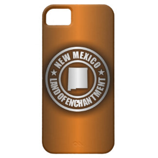 New Mexico Steel (B) iPhone 5 Cases