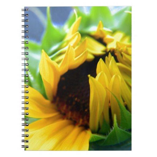 New Mexico Sunflower Journal