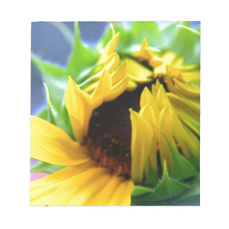 New Mexico Sunflower Memo Notepads