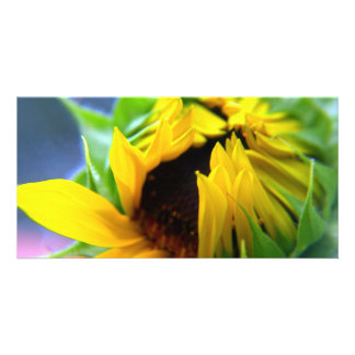 New Mexico Sunflower Photo Card Template