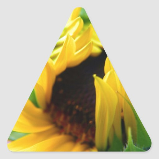 New Mexico Sunflower Triangle Sticker