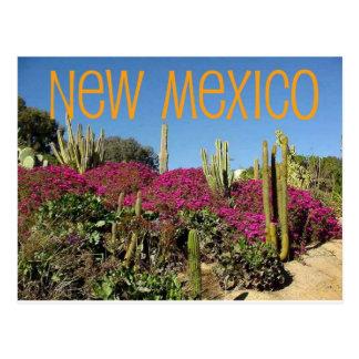 New México Postal