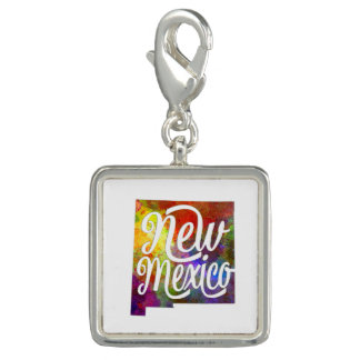 New Mexico US State in watercolor text cut out Dijes
