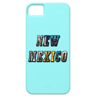 New Mexico, USA iPhone SE/5/5s Case