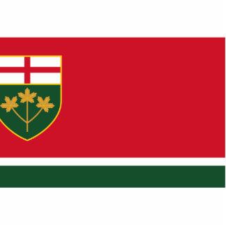 New-Ontario Proposal flag Photo Sculpture