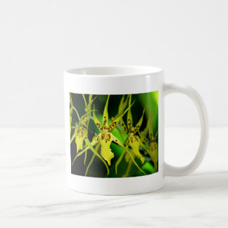 new orchid coffee mug