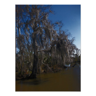 New Orleans Bayou Poster