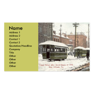 New Orleans Canal St Snow 1895, Business Card