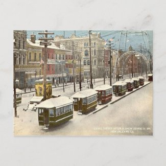 New Orleans Canal St Snow 1895 Post Card
