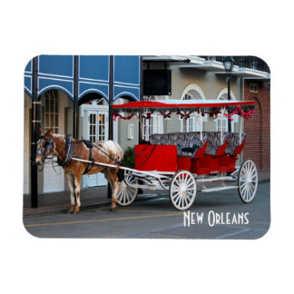 New Orleans Carriage Ride Rectangular Photo Magnet