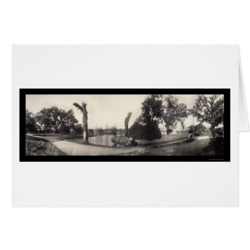 New Orleans City Park Photo 1909 Greeting Card
