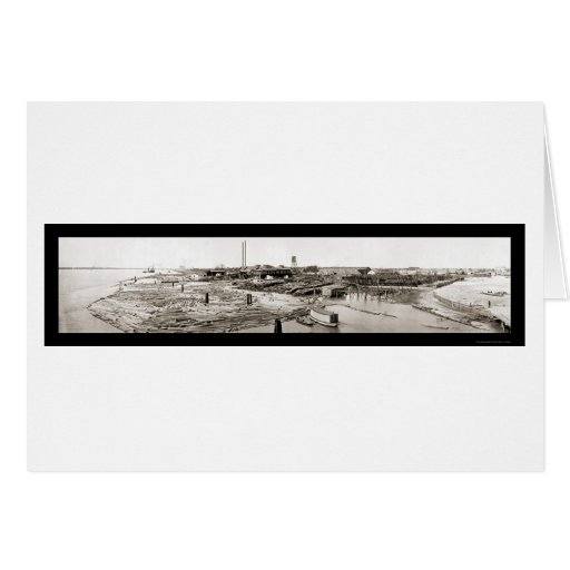 New Orleans LA Lumber Photo 1913 Greeting Cards