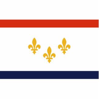 New Orleans, Luisiana, Estados Unidos Fotoescultura Vertical