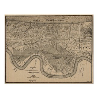 New Orleans MAp 1849 print