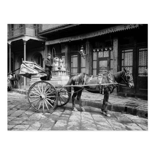 New Orleans Milk Cart: 1903 Postcard