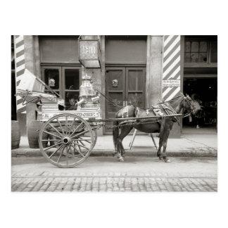 New Orleans Milk Cart, 1910 Postcard