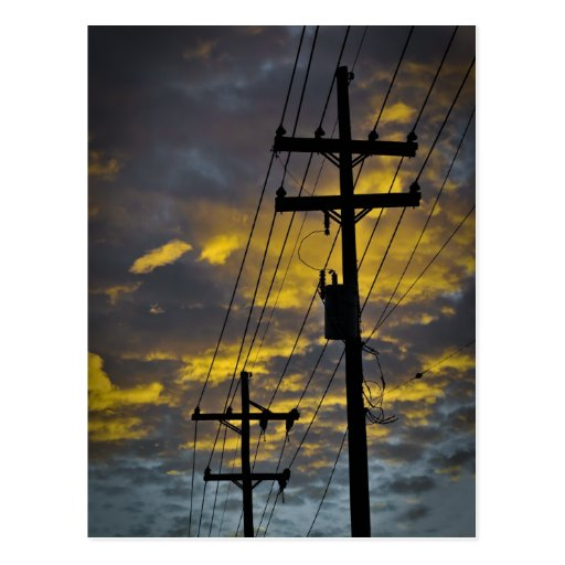 New Orleans Power Line Postcard