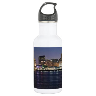 NEW ORLEANS STAINLESS STEEL WATER BOTTLE