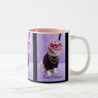 New Orleans Taza