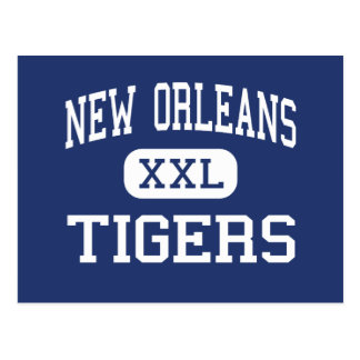 New Orleans Tigers Charter New Orleans Postcard