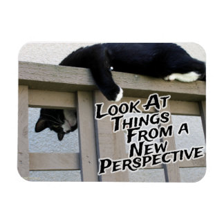 New Perspective Magnet