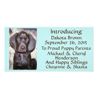 New Pet Adoption Announcement Brown Font on Blue