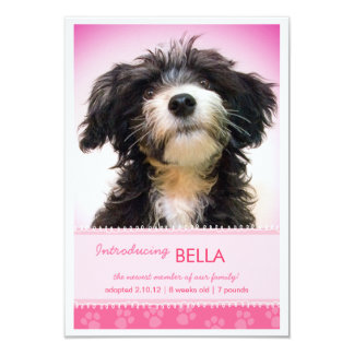 New Pet Pink Paw Prints for Girl Announcement