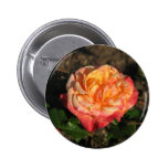 New Rose 048 Button