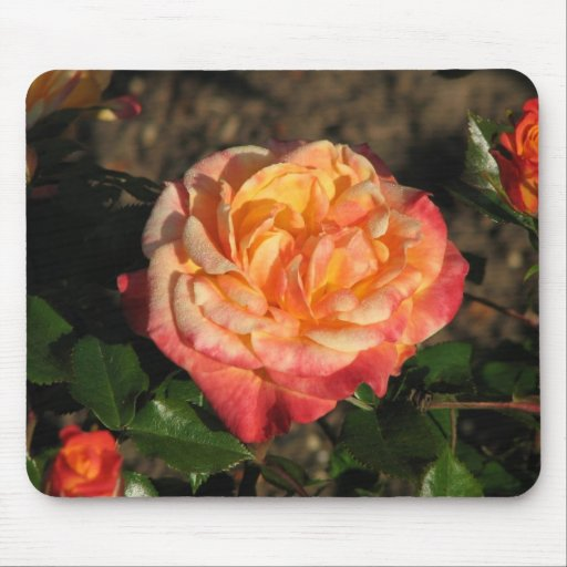 New Rose 048 Mouse Mats