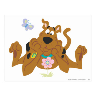 New Scooby Doo Review Pose 40 Post Cards