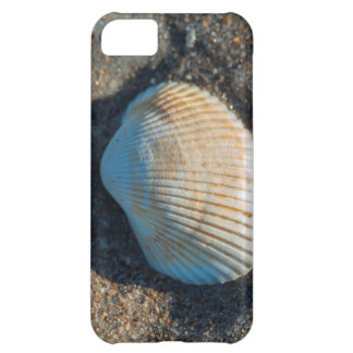 New Smyrna Beach, cockle shell Cover For iPhone 5C