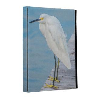 New Smyrna Beach, Snowy Egret on dock iPad Case