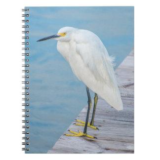 New Smyrna Beach, Snowy Egret on dock Notebook