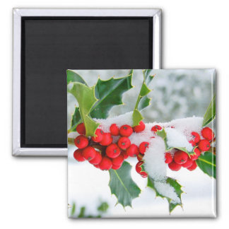 New Snow on the Holly 2 Inch Square Magnet