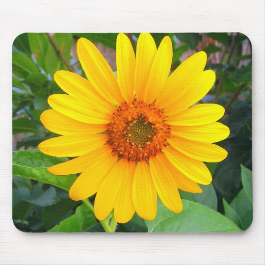 New Sunflower Mouse Pad