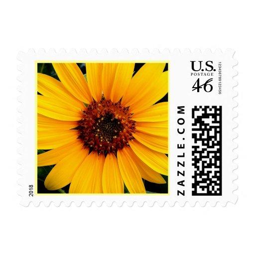 New Sunflower Stamp