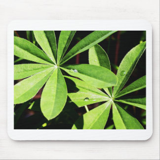 new year (22).jpg mouse pad