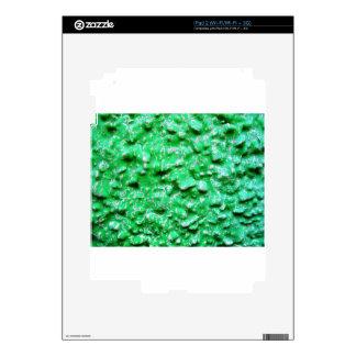 new year (7).jpg skin for iPad 2