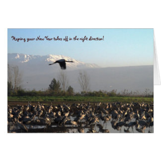 New Year Beginning Well Greeting Card