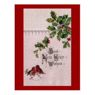 New Year Euro Robins and Holly Postcard