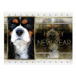 New Year - Golden Elegance - Cavalier - Tri-color Postcards
